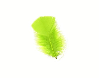 Turkey Feathers, Lime Green Loose Turkey Plumage Feathers, Short T-Base Body Feathers for Craft and Fly Fishing Supply ZUCKER®