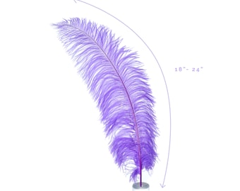 """Ostrich Feathers, Lavender Ostrich Feather Spads 18-24"""", Centerpiece Floral Supplies, Carnival & Costume Feathers ZUCKER®"""