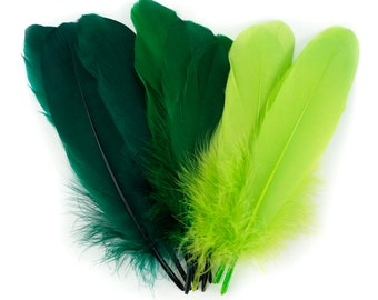 Mixed Dyed Goose Pallet Feathers 12 pieces SHAMROCK Goose Feathers, Green Craft Feathers and Art Supplies  ZUCKER®