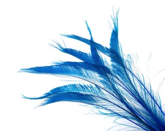 """Bleach Dyed Peacock Sword Feathers 10 to 100 Pieces 15-25"""" Dark TURQUOISE - Floral Decor, Millinery, Jewelry Design ZUCKER® Sanitized in USA"""