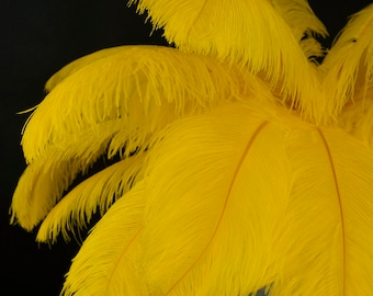 """Large Ostrich Feathers 17-25"""", 1 to 25 Pieces, YELLOW, For Wedding Centerpieces, Party Decor, Millinery, Carnival, Costume ZUCKER® USA"""