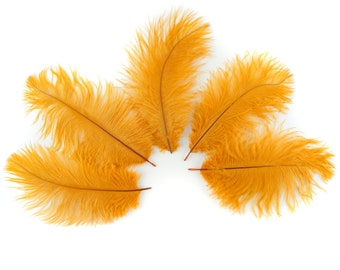 """Bulk Ostrich Feathers 4-8"""" MARIGOLD, Ostrich Drabs, Bouquets, Boutonnieres, Mini Centerpieces ZUCKER® Dyed and Sanitized USA"""