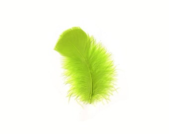 Turkey Feathers, Fluorescent Chartreuse Loose Turkey Plumage Feathers, Short T-Base Body Feathers for Craft and Fly Fishing Supply ZUCKER®