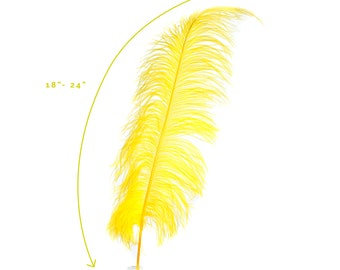"""Ostrich Feathers, Yellow Ostrich Feather Spads 18-24"""", Centerpiece Floral Supplies, Carnival & Costume Feathers ZUCKER®"""
