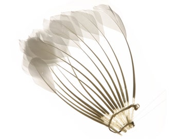 Feather Pads, White Stripped Duck Center Fan, Stripped Duck Cochette Center Fan for Jewelry Design, Arts and Crafts Supplies ZUCKER®