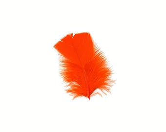 Turkey Feathers, Orange Loose Turkey Plumage Feathers, Short T-Base Body Feathers for Craft and Fly Fishing Supply ZUCKER®