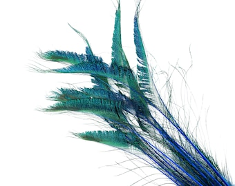 """Peacock Sword Stem Dyed Feathers, 10 to 100 pieces 15-25"""" - Dark TURQUOISE, Floral Decor, Millinery, Jewelry Design ZUCKER® Sanitized in USA"""