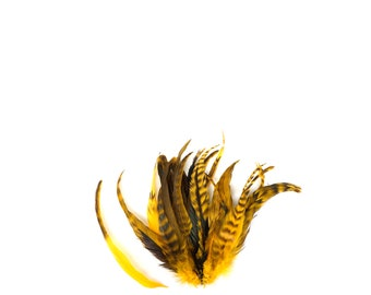 """GOLD Dyed Rooster Feathers, 8-10"""" Barred Rooster Feathers, 25pcs Rooster Coque Tails For Arts & Crafts,DIY, Millinery,Costume Design ZUCKER®"""