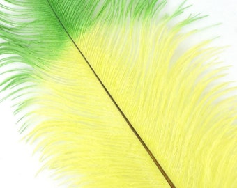 """Lime and Kelly Green Tipped Ostrich Feathers, Ostrich Feather Drabs 17+"""" 3 Pieces for Carnival & Costume Feathers ZUCKER®"""