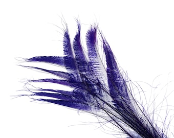 """Bleach Dyed Peacock Sword Feathers 10 to 100 Pieces 15-25"""" REGAL - Floral, Millinery, Jewelry Design ZUCKER® Dyed & Sanitized in USA"""