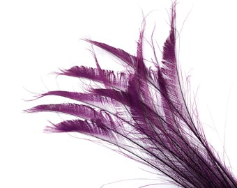 """Bleach Dyed Peacock Sword Feathers 10 to 100 Pieces 15-25"""" PURPLE - Floral Decor, Millinery, Jewelry Design ZUCKER® Dyed & Sanitized in USA"""