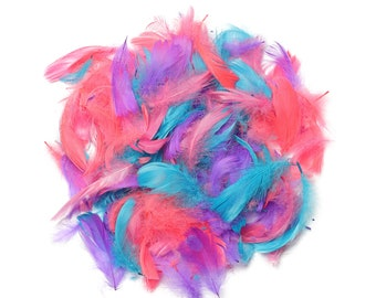 """Goose Coquille Feathers, 3-5"""" Coral Reef Mix Loose Goose Feathers, Small Feathers, Arts and Craft Supplies ZUCKER®"""