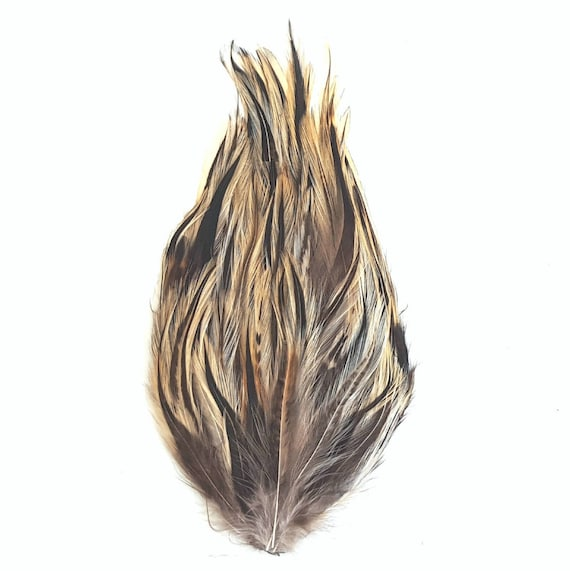 badger-cock-hackle-feathers-naked-small-penis-man