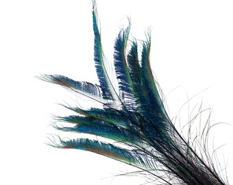 """Peacock Sword Stem Dyed Feathers, 10 to 100 pieces 15-25"""" - PURPLE, Floral Decor, Millinery, Jewelry Design ZUCKER® Sanitized in USA"""