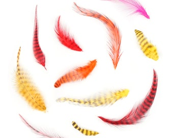 """Hot Dyed Loose Chinchilla Rooster Plumage Feathers, 1-4"""" Grizzly Barred Rooster Feathers For Fly Fishing Tying, Craft & Art Supply ZUCKER®"""