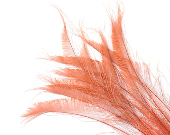 """Bleach Dyed Peacock Sword Feathers 10 to 100 Pieces 15-25"""" Dusty ROSE, Floral Decor, Millinery, Jewelry Design ZUCKER® Dyed & Sanitized  USA"""