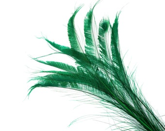 """Bleach Dyed Peacock Sword Feathers 10 to 100 Pieces 15-25"""" KELLY Green, Floral Decor, Millinery, Jewelry Design ZUCKER® Dyed & Sanitized USA"""