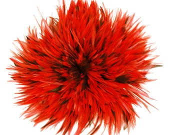 """Rooster Feathers, 4-6"""" HOT ORANGE Rooster Badger Saddle Strung Craft Feathers ZUCKER®"""