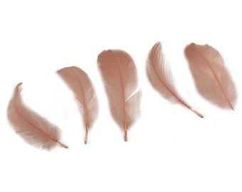 """Goose Nagoire Feathers, 4-6"""" Champage Blush Loose Goose Nagoire Feathers, Small Feathers, Arts and Craft Supplies ZUCKER®"""