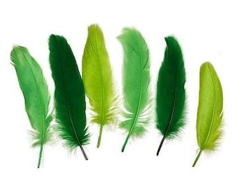 "Goose Satinette Feathers, 4-6"" Green Grass Mix Loose Goose Feathers, Assorted Green Feathers, Small Feathers, Art and Craft Supplies ZUCKER®"