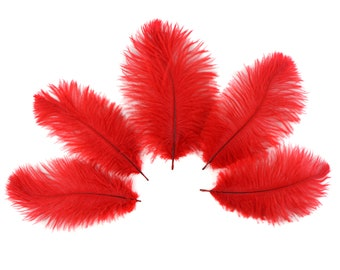 """Bulk Ostrich Feathers 4-8"""" RED, Mini Ostrich Drabs, Bouquets, Boutonnieres, Small Centerpieces ZUCKER® Dyed and Sanitized USA"""