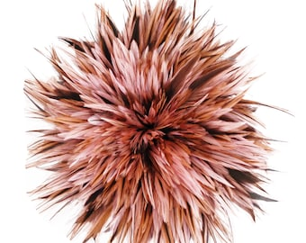 """Rooster Feathers, 4-6"""" CANDY PINK Rooster Badger Saddle Strung Craft Feathers ZUCKER®"""
