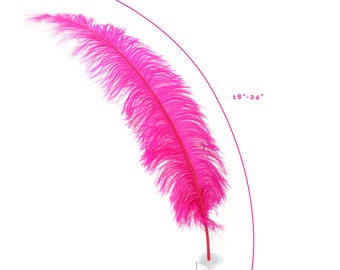 """Ostrich Feathers, Shocking Pink Ostrich Feather Spads 18-24"""", Centerpiece Floral Supplies, Carnival & Costume Feathers ZUCKER®"""