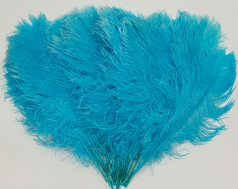 """Lt. Turquoise Ostrich Feather Tips, 16-18"""" Ostrich Tails 30 Pieces for Millinery & Floral Design, DIY Costume, Carnival, Mardi Gras ZUCKER®"""