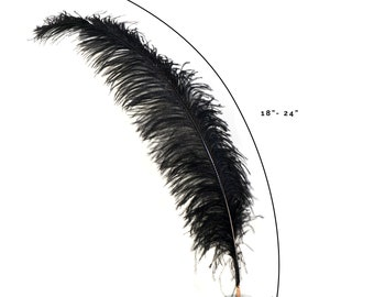 """Ostrich Feathers, Black Ostrich Feather Spads 18-24"""", Centerpiece Floral Supplies, Carnival & Costume Feathers ZUCKER®"""