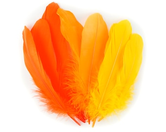 Mixed Dyed Goose Pallet Feathers 12 pieces SUNRISE Goose Feathers, Orange Craft Feathers and Art Supplies  ZUCKER®