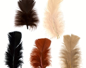 Turkey Feathers, Earth Mix Loose Turkey Plumage Feathers, Short T-Base Body Feathers for Craft and Fly Fishing Supply ZUCKER®