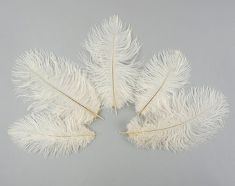 """Ostrich Feathers 4-8"""" IVORY, Mini Ostrich Drabs, Floral Bouquets, Boutonnieres, Small Centerpieces, Hat Trims, ZUCKER®"""