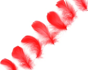 """Goose Coquille Feathers, 3-5"""" Red Loose Goose Feathers, Small Feathers, Arts and Craft Supplies ZUCKER®"""