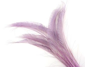"""Bleach Dyed Peacock Sword Feathers 10 to 100 Pieces 15-25"""" ORCHID - Floral Decor, Millinery, Jewelry Design ZUCKER® Dyed & Sanitized in USA"""