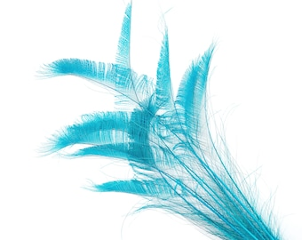 """Bleach Dyed Peacock Sword Feathers 10 to 100 Pieces 15-25"""" Dark AQUA, Floral Decor, Millinery, Jewelry Design ZUCKER® Dyed Sanitized in USA"""