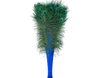 Dark Turquoise Dyed Peacock Feathers, 25-40 inches Stem Dyed Peacock Tail Feathers, Peacock Tail Feathers with Large Iridescent Eyes ZUCKER®