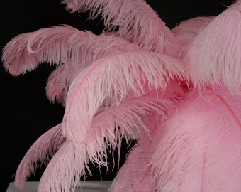 """Large Ostrich Feathers 17-25"""", 1 to 25 Pieces Prime Ostrich Femina Wing Plumes Candy PINK, Wedding Centerpiece, Carnival Feather ZUCKER® USA"""