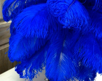 """Ostrich Feathers 17-20"""" ROYAL, 1 to 25 pcs, Ostrich Plumes, Carnival Samba, Ostrich Drab, Mardi Gras, Centerpieces, Feather Fan, ZUCKER® USA"""