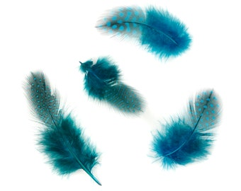 """Guinea Feathers, Dyed Dark Turquoise 1-4"""" Guinea Hen Polka Dot Loose Plumage Feathers & Craft Supply ZUCKER®"""