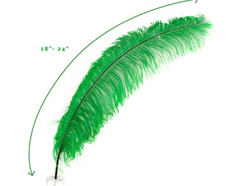 """Ostrich Feathers, Kelly Green Ostrich Feather Spads 18-24"""", Centerpiece Floral Supplies, Carnival & Costume Feathers ZUCKER®"""
