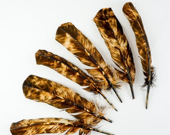 LEFT SIDE 25pc/pkg Beige & Brown Tie-Dyed Turkey Quill Value Pack - For Arts and Crafts, Millinery, Carnival and Costume Design ZUCKER®
