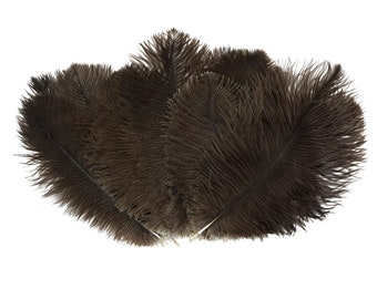 """Ostrich Feathers 9-12"""" NATURAL, Ostrich Drabs, Centerpiece Floral Supplies, Carnival & Costume Feathers ZUCKER®Dyed and Sanitized USA"""