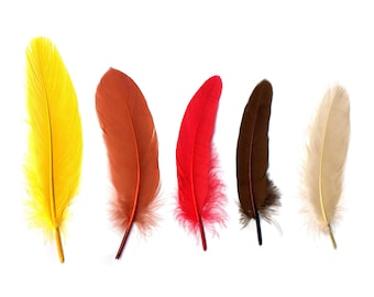 """Goose Satinette Feathers, 4-6"""" Fall Mix Loose Goose Feathers, Assorted Earth Tone Feathers, Small Feathers, Art and Craft Supplies ZUCKER®"""