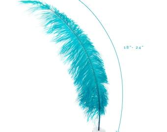 "Ostrich Feathers, Dark Aqua Ostrich Feather Spads 18-24"", Centerpiece Floral Supplies, Carnival & Costume Feathers ZUCKER®"