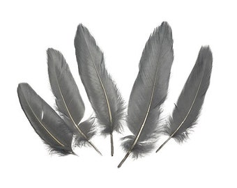 """Goose Satinette Feathers, 4-6"""" Silver Grey Loose Goose Feathers, Small Feathers, Art and Craft Supplies ZUCKER®"""