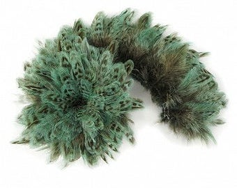 1 YARD TURQUOISE Ringneck Pheasant Plumage - For Millinery, Jewelry Making, Carnival & Cultural Arts Design ZUCKER®