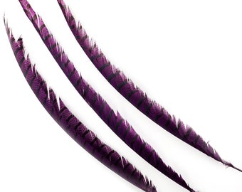 """Purple Pheasant Tail Feathers, 20-40"""" Lady Amherst Pheasant Center Tail Feathers 3 pieces Carnival Costume Design & Cultural Arts  ZUCKER®"""