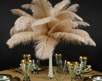 """Ostrich Feathers 13-16"""" BEIGE 12 PIECES For Feather Centerpieces, Party Decor, Millinery, Carnival, Fashion & Costume ZUCKER®"""