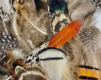 Natural Feather Assortment, Pheasant Feathers, Guinea Feathers, Partridge Feathers - 40 Pieces Short 1.5-3.5 inches, Natural Plumage ZUCKER®