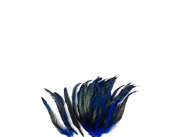 """BLUE Dyed Rooster Feathers, 8-10"""" Barred Rooster Feathers, 25pcs Rooster Coque Tails For Arts & Crafts,DIY, Millinery,Costume Design ZUCKER®"""